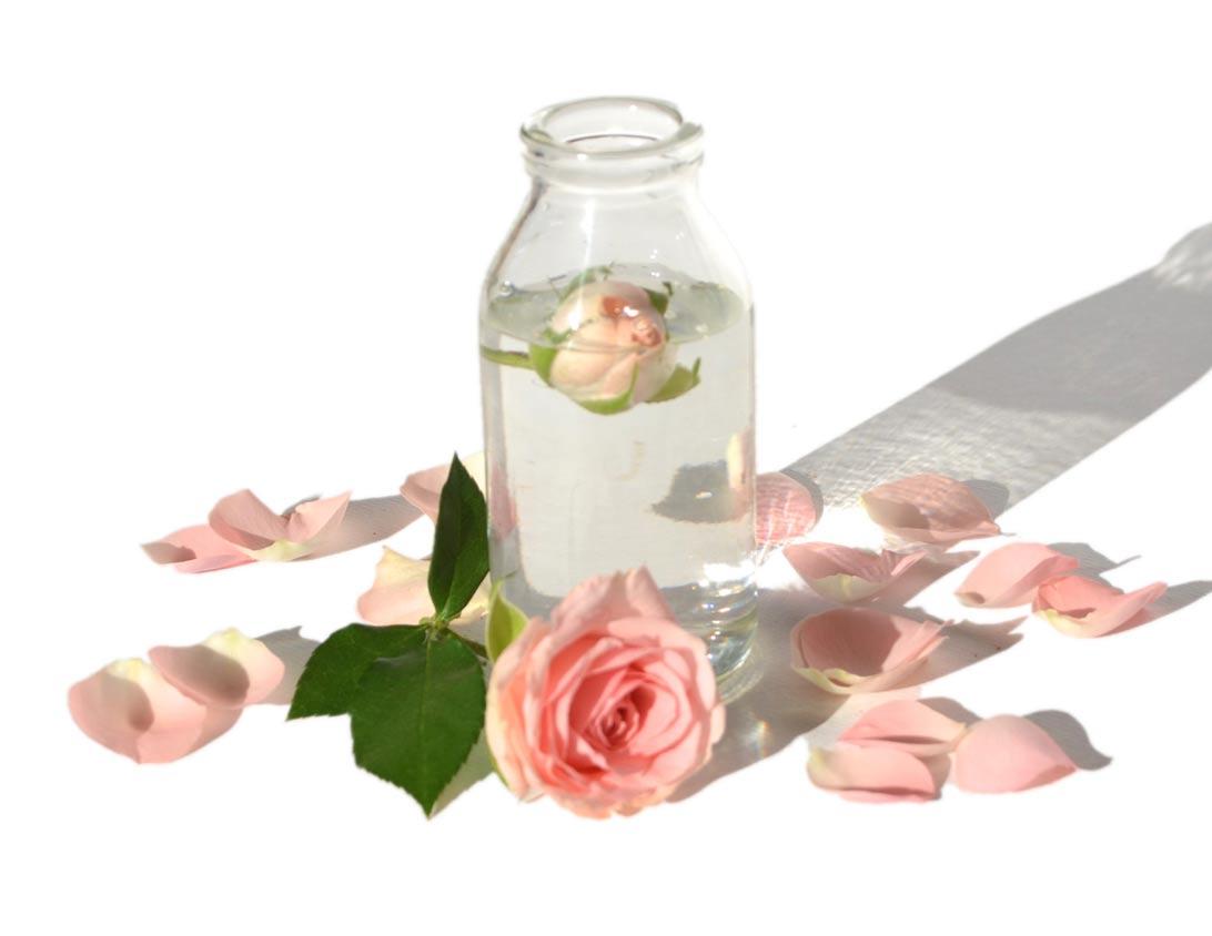 Rosalia by Bảo Hiên -cách dùng toner bằng bông tẩy trang hay trực tiếp, bạn đã biết chưa?