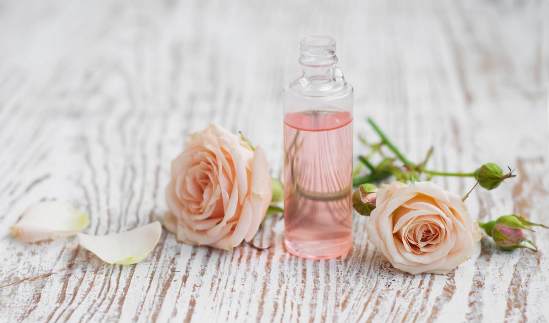 Rosalia - Bảo Hiên Farm - Sử dụng nước hoa hồng đúng cách