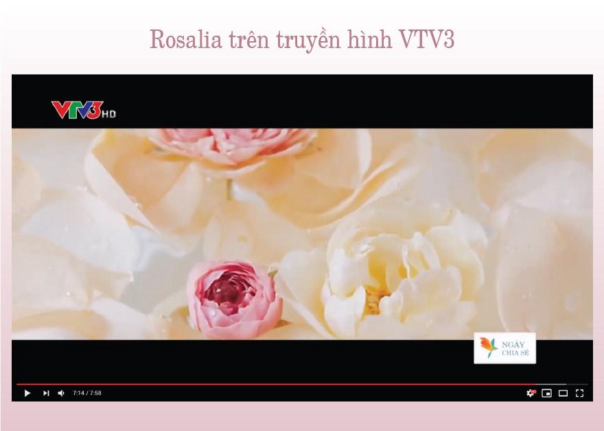 Bảo Hiên trên truyền hình VTV3